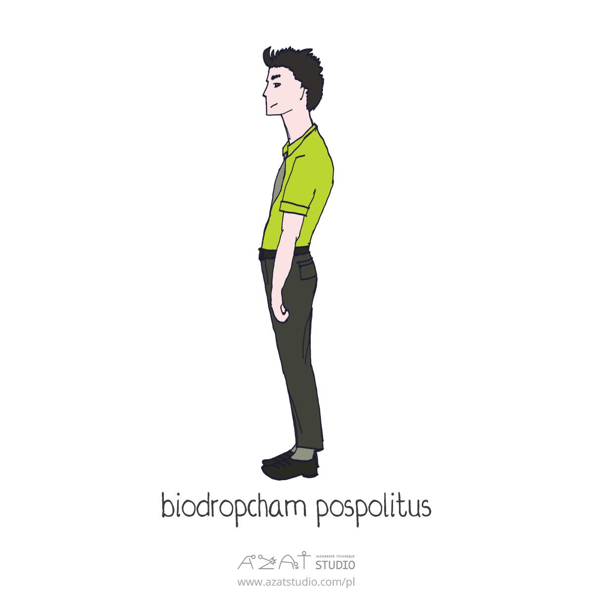 biodropcham pospolitus