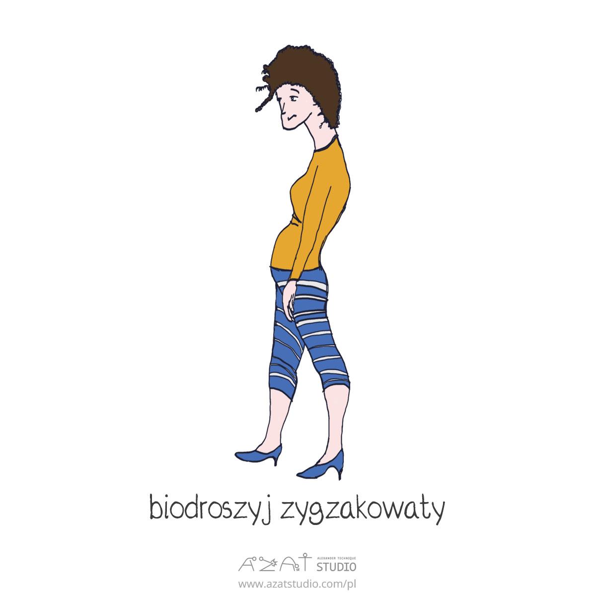 biodroszyj zygzkowanty